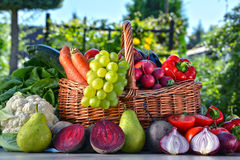 Fresh organic vegetables and fruits in the garden Stock Image