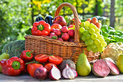 Fresh organic vegetables and fruits in the garden Royalty Free Stock Image