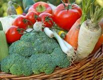 Fresh organic vegetables. Full wicker basket of fresh vegetables Stock Photos