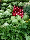 Fresh organic vegetables on market Royalty Free Stock Image