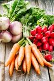Fresh organic vegetables Royalty Free Stock Photography