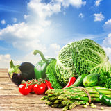 Fresh organic vegetables in outdoor setting Stock Images