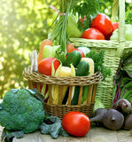 Fresh organic vegetables on table Royalty Free Stock Image