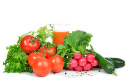 Fresh organic vegetables tomatoes, salad, radish Royalty Free Stock Photos