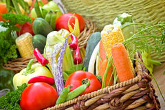 Fresh organic vegetables Royalty Free Stock Image