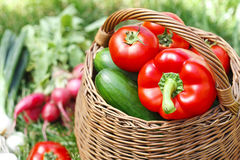 Fresh organic vegetables in a wicker basket Stock Image