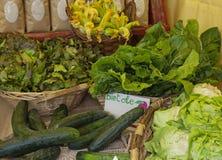 Fresh organic vegetables in wicker basket Stock Photos