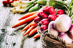 Fresh organic vegetables on wooden table. Freshly harvested organic vegetables on wooden table Royalty Free Stock Photos