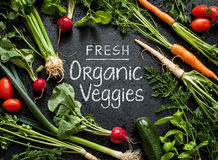 'Fresh Organic Veggies' poster design. Young spring vegetables on black. royalty free stock photography