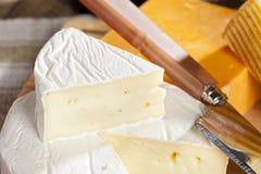 Fresh Organic White Brie Cheese Stock Images