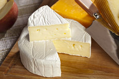 Fresh Organic White Brie Cheese Royalty Free Stock Images