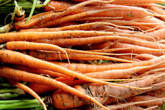 Fresh organic yellow carrots background Royalty Free Stock Photos