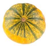 Fresh organic yellow decorative pumpkin Stock Image