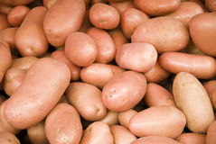 Fresh organic young potatoes sold on market Stock Photography