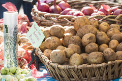 Fresh organic Yukon gold potatoes and onions at farmer's market Stock Photos