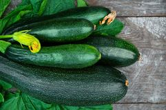 Fresh organic zucchini on the wooden table Royalty Free Stock Photo