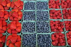 Fresh, organically grown berries. Strawberries, blueberries, raspberries Royalty Free Stock Photos