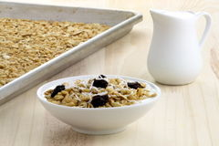 Fresh from the oven healthy granola Royalty Free Stock Images