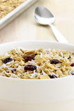 Fresh from the oven healthy granola Royalty Free Stock Photography