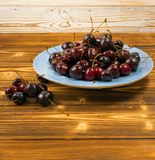 Fresh Overripe ripe Cherries on Blue Rustic Wooden Background. Round blue plate of fresh ripe cherries on old wooden background for design montage. Vintage wood stock images