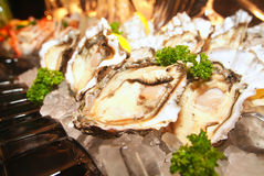 Fresh oyster Stock Photo