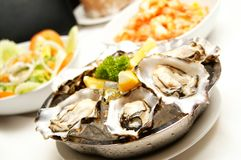 Fresh Oyster Stock Image