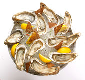 Fresh oyster in the bowl with ice. Food Royalty Free Stock Photography