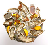 Fresh oyster in the bowl with ice. Food Royalty Free Stock Photos
