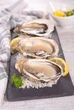 Fresh oyster Royalty Free Stock Photo