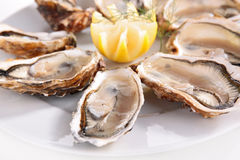Fresh oyster and lemon Royalty Free Stock Photo