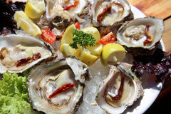 Fresh Oyster. With Lemon on a Plate Stock Photography