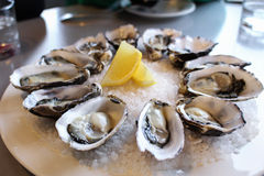 Fresh oyster from oyster farm. Served with lemon Stock Photo