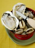 Fresh oyster with a oyster knife Stock Images