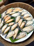 Fresh oyster. Prepare for dinner Royalty Free Stock Photos