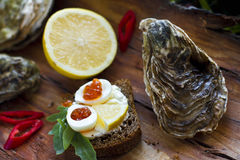 Fresh oyster with red caviar, lemon and chili pepper Stock Photos