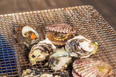 Fresh Oyster and scallop grill.  Royalty Free Stock Photo