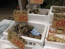 Fresh Oyster and shellfish. Osaka, Japan - June 1, 2015: Fresh Oyster and shellfish with price tag at Kuromon Ichiba market Stock Photography