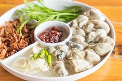 Fresh oyster with vegetables. On plate Royalty Free Stock Photo