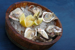 Fresh Oysters. Fresh delicious cape rock oysters on ice with lemon and a fork in a wooden bowl on a blue table cloth in a restaurant Royalty Free Stock Photography