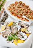 Fresh oysters and another dishes Stock Images