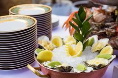 Oysters served on the restaurant table. Fresh oysters on a bed of ice with lemon and wasabi. View of oysters and seafood and plates on table Royalty Free Stock Photos