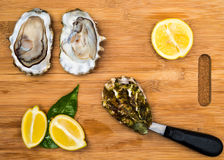 fresh oysters with a blade Stock Photography