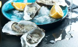Fresh oysters close-up on blue plate, served table with oysters, lemon and champagne in restaurant stock photo