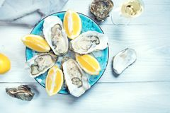Fresh oysters close-up on blue plate, served table with oysters, lemon and champagne in restaurant. Gourmet food Royalty Free Stock Photography