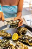 Fresh Oysters close-up royalty free stock photography