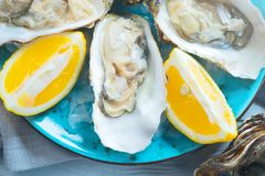 Fresh Oysters closeup on blue plate, served table with oysters, lemon and ice. Healthy sea food. Oyster dinner in restaurant. Gourmet food. Top view, flatlay royalty free stock images