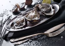 Fresh oysters closeup. Fresh oysters on a plate closeup Stock Images