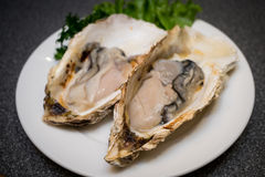 Fresh Oysters , delicious. The Fresh Oysters , delicious in restaurant Stock Photo