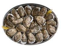 Fresh oysters dishing up with lemon on white background royalty free stock photos