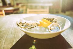Extraordinary meal consisting of fresh oysters in ice and pieces of lemon. Fresh oysters. Extraordinary meal consisting of fresh oysters in ice and pieces of royalty free stock photo